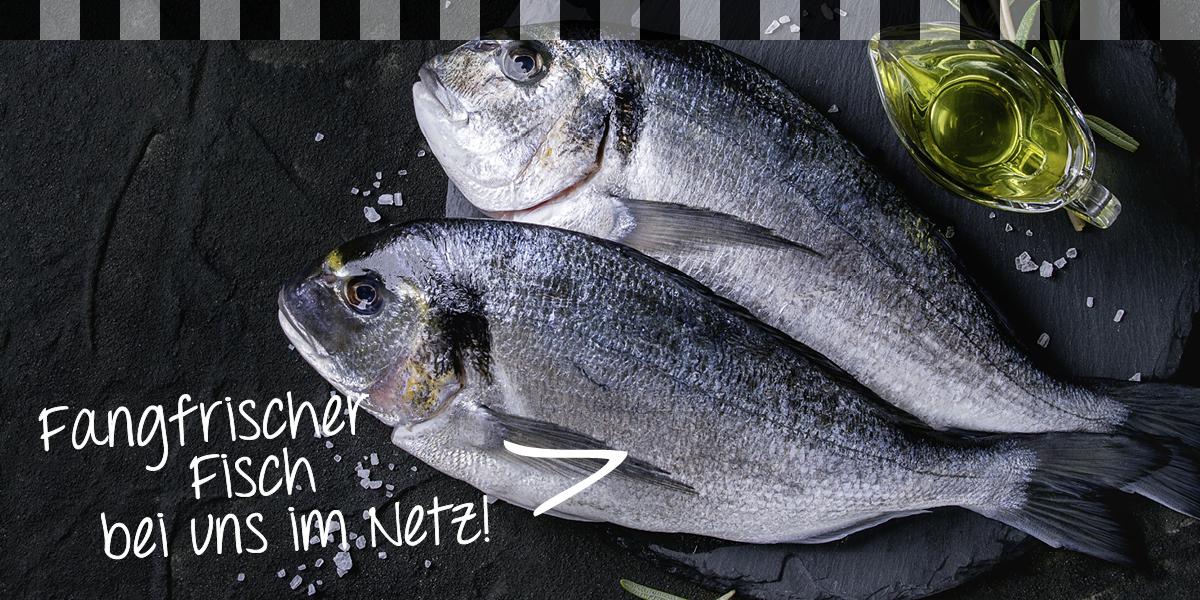 Fangfrischer Fisch bei uns im Netz!